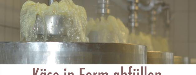 Käse in Form pumpgen
